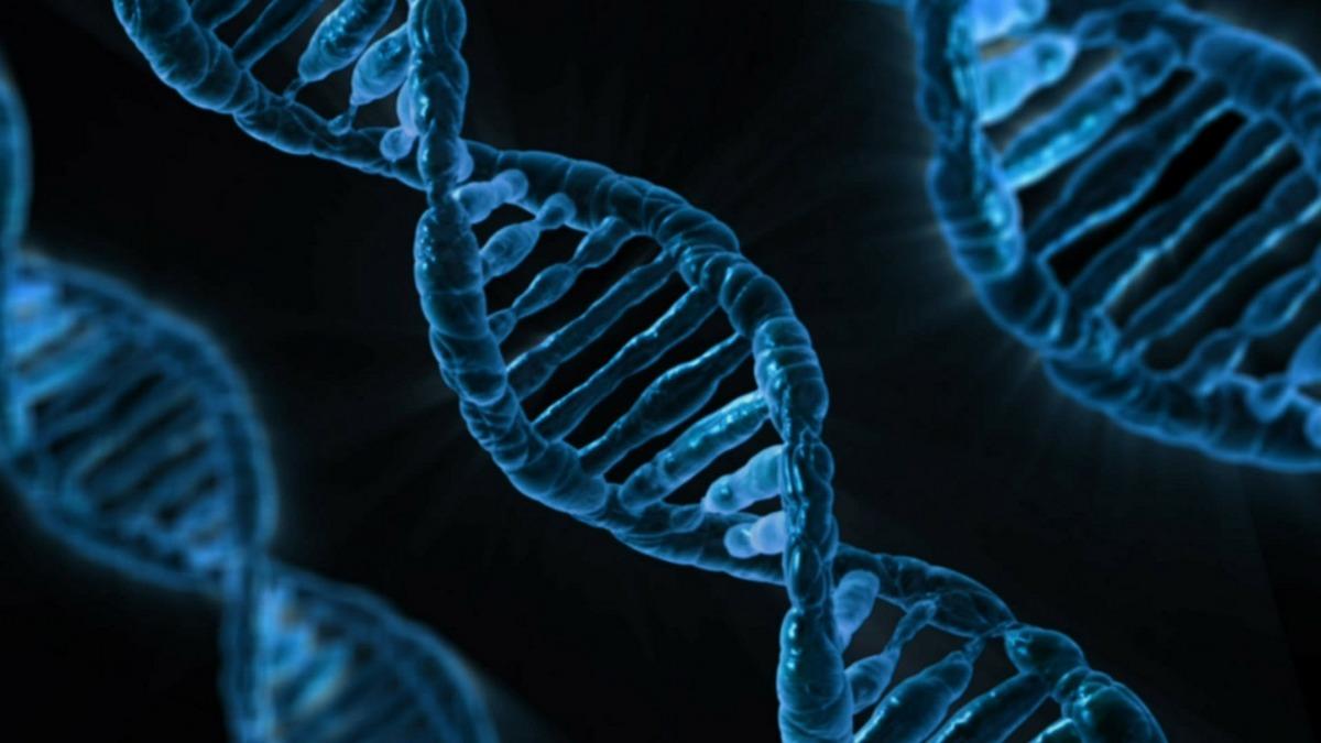 Badanie PGD zwiększa szansę powodzenia in vitro